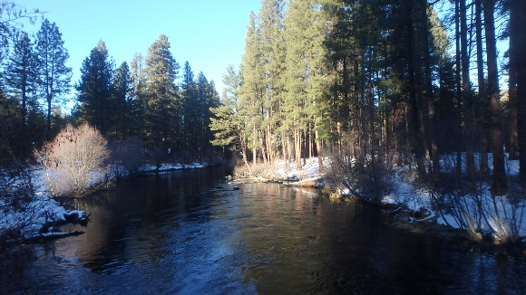 The Metolius River in January