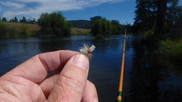 A #14 tan ant pattern that worked well during the day on Hat Creek.