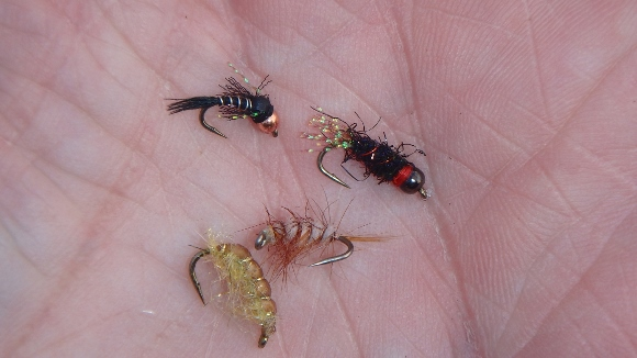 Our fly choices for the day.