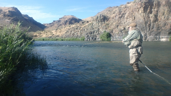 Olympus digital camera bamboopursuits for Owyhee river fly fishing
